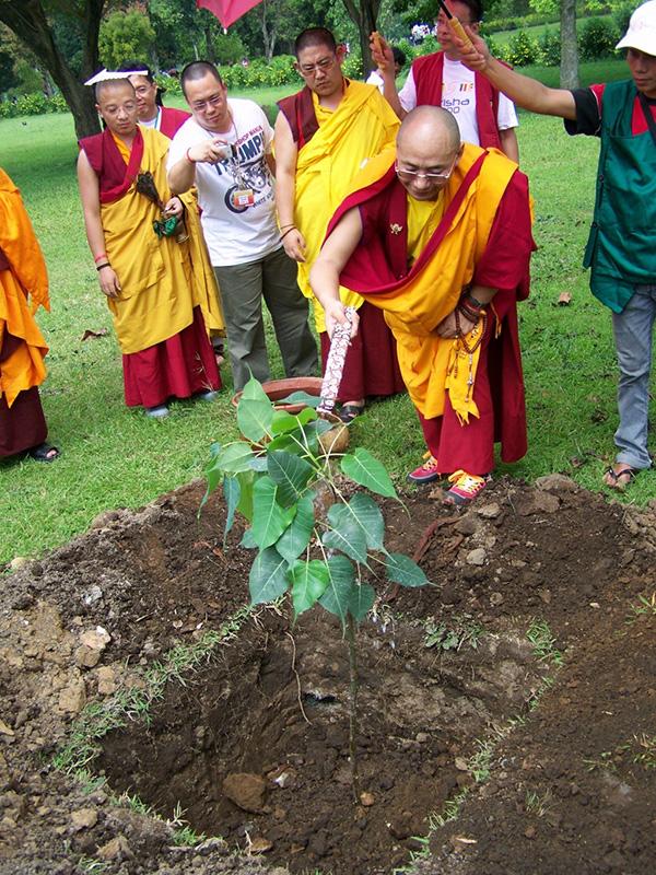 zurmang Drukpa Rinpoche plant the Bodhi tree