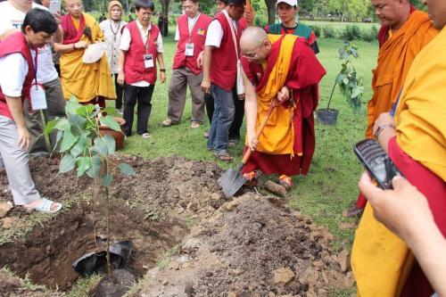 Penanaman pohon Bodhi di area Candi Borobudur