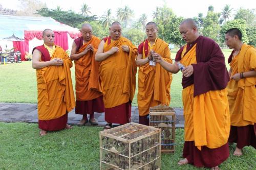 releasing animal puja